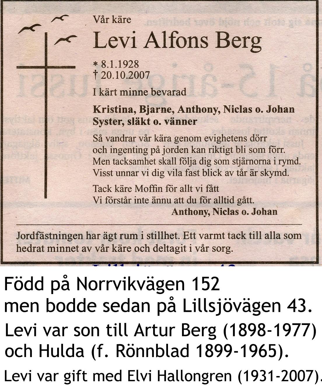 Berg Levi