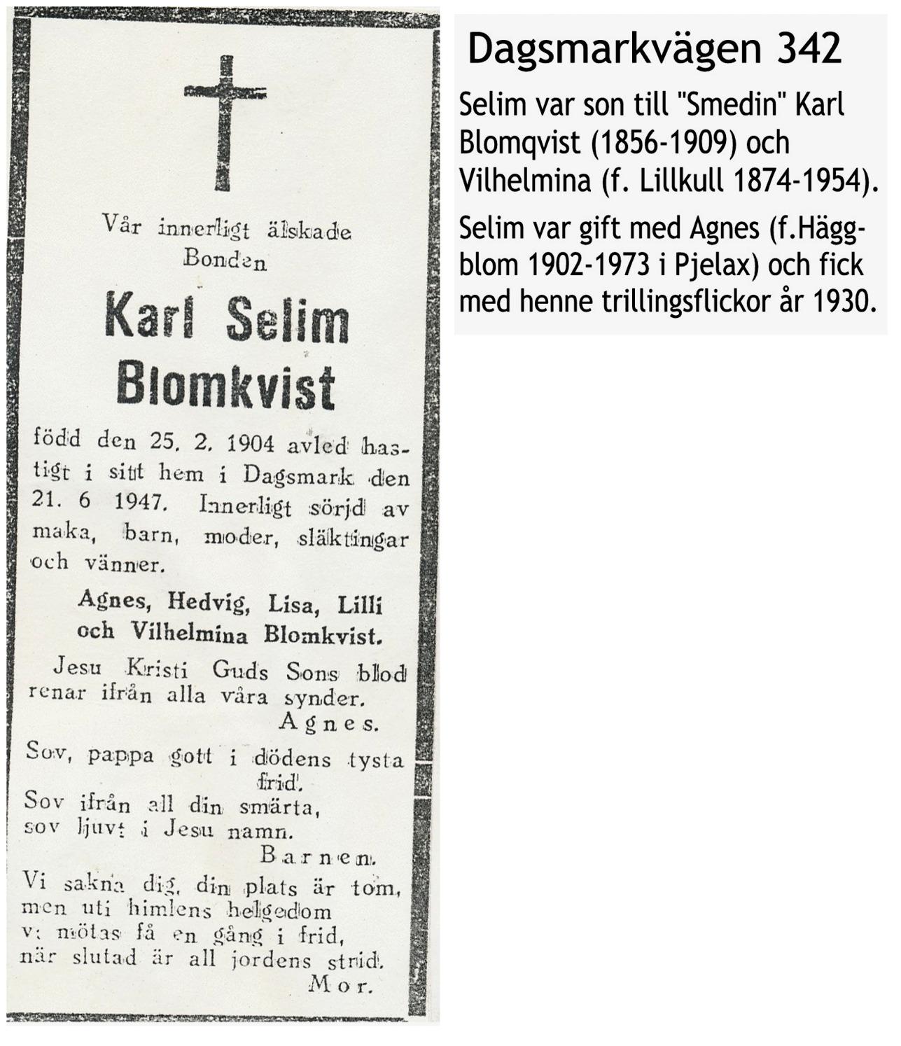 Blomkvist Selim