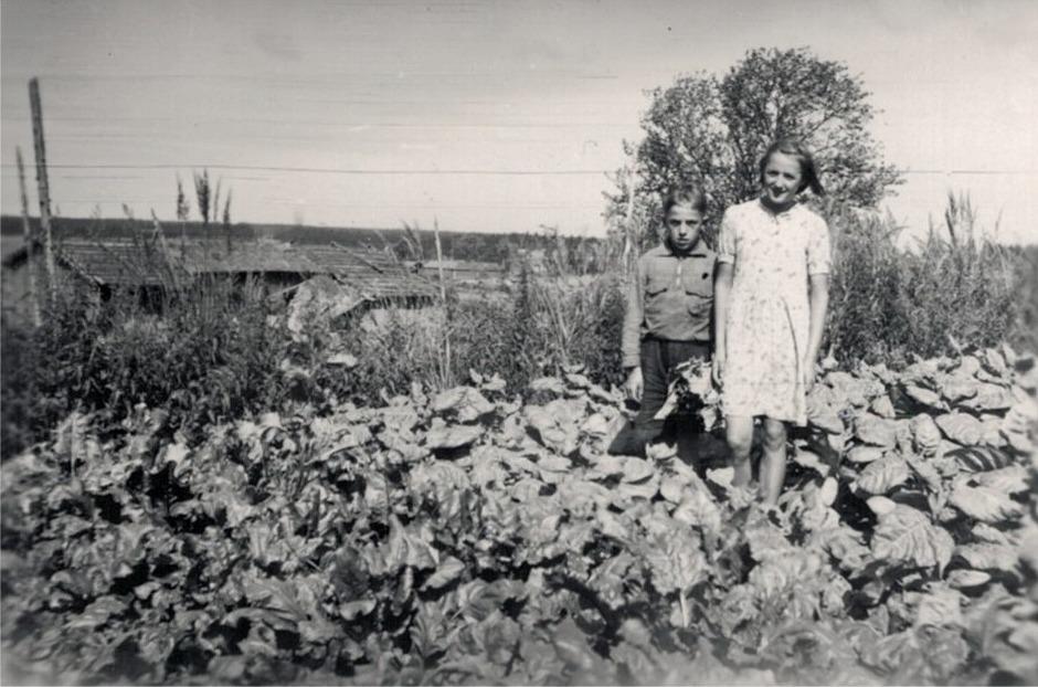 Här på Skräddarbacken i Korsbäck står syskonen Johan och Karin Lindqvist i trädgårdslandet.