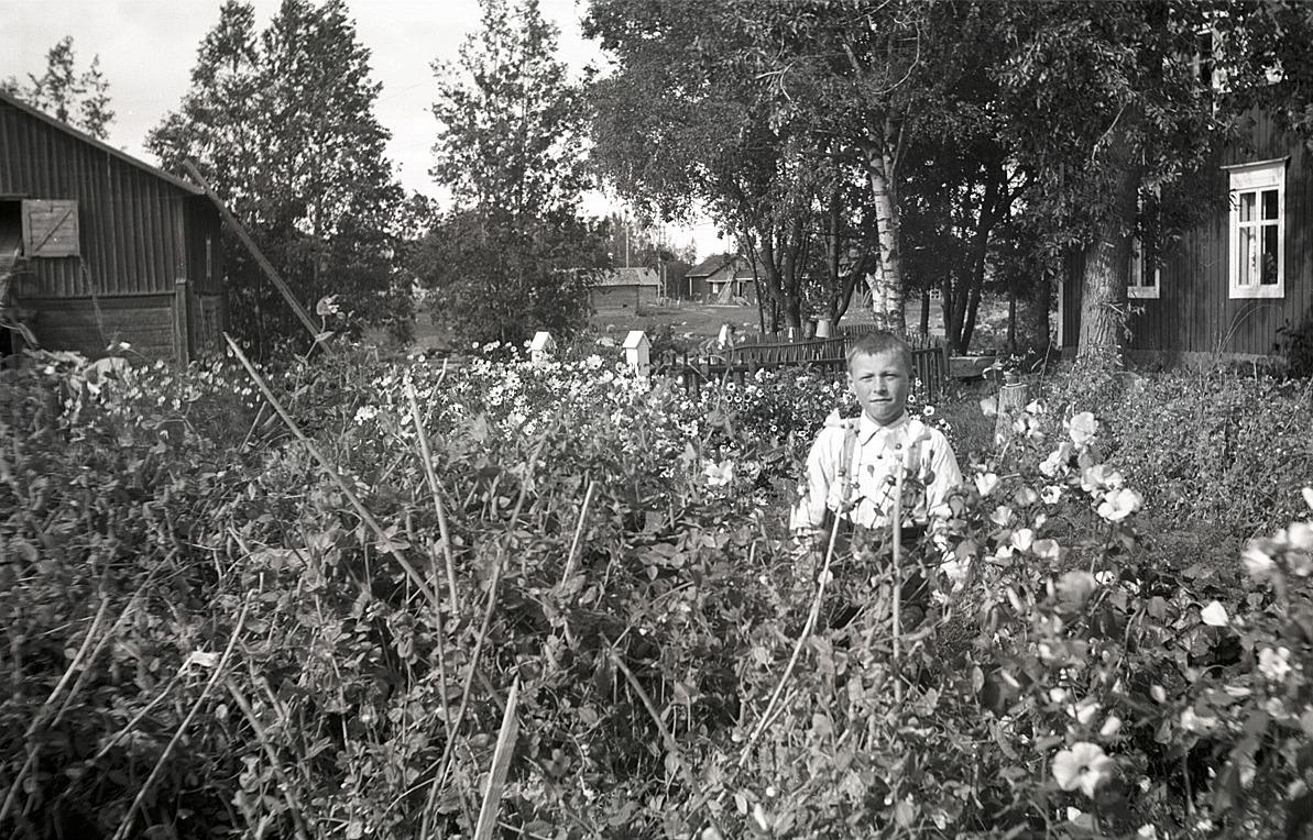 Bland blommorna står Lars Börje Engelholm. Till vänster syns pappa Arnes kvarn.