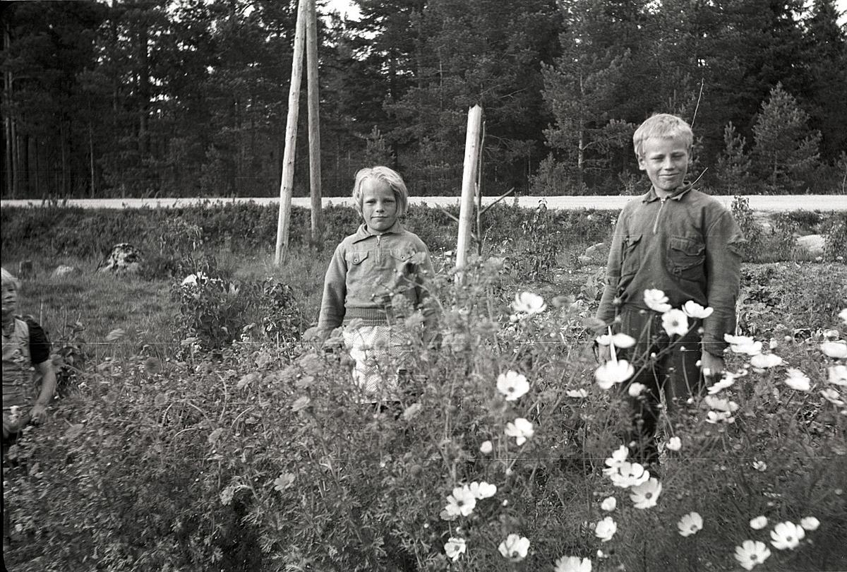 Else-Maj och Åke Hemberg visar upp klubblandet i Palon i Dagsmark.