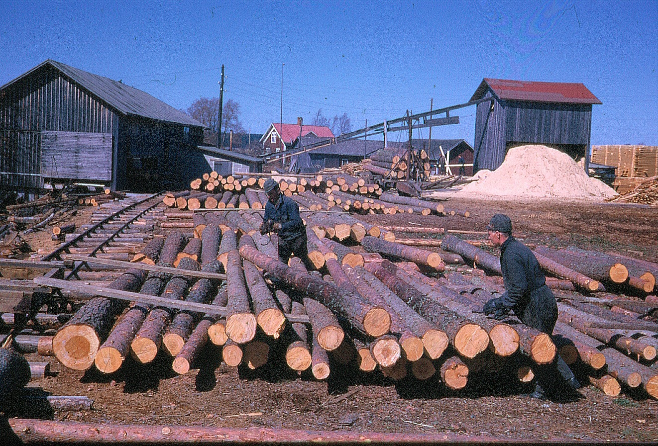 På bilden två arbetare på sågbacken.