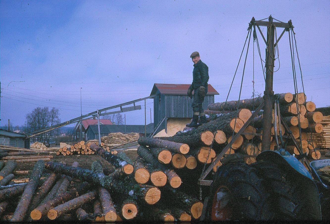 Pauli Mannila lastar av stockar på sågbacken.
