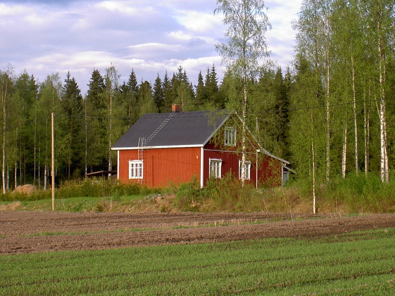 Dahlroos fotograferad från väster år 2003.