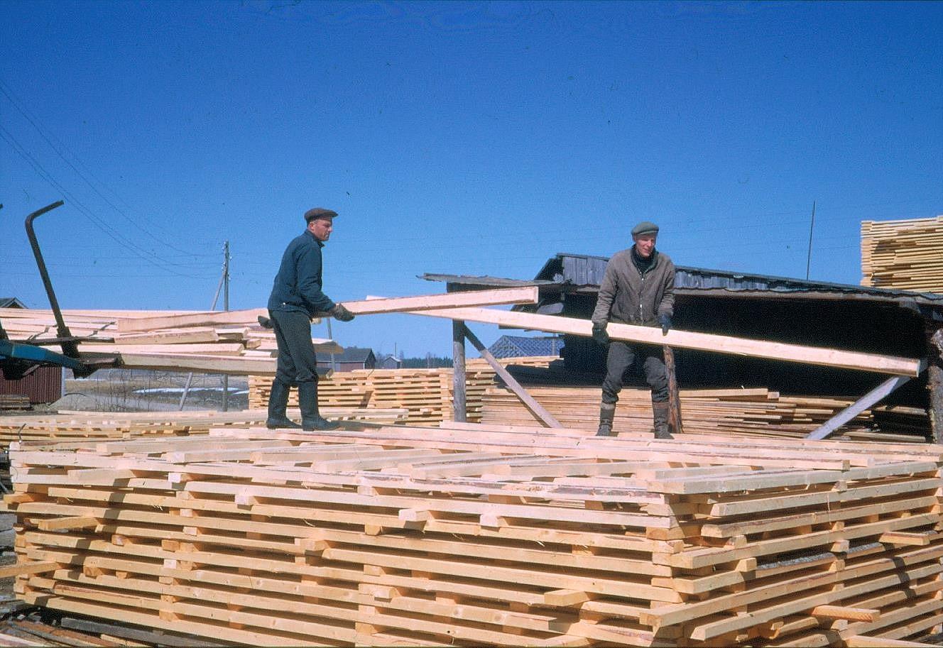 Levi Berg och Boris Lindblad stabbar plankor på sågbacken.