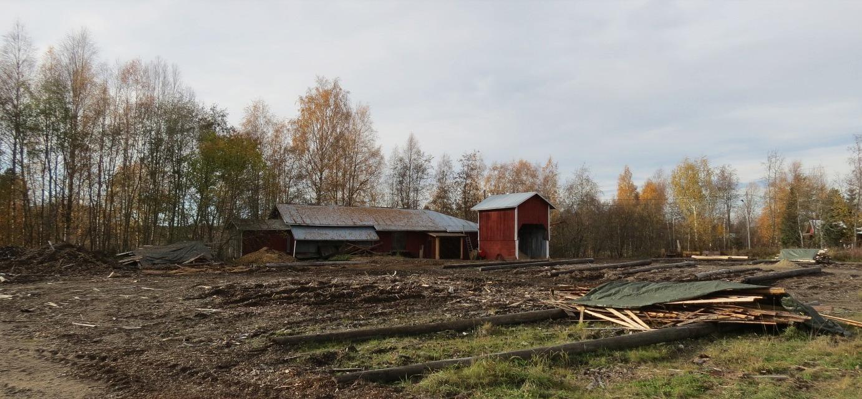 Hösten 2013 var det tomt på sågbacken.