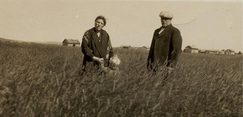 På bilden Johan Viktor och Amanda Gröndahl i sädesåkern på Åbackan.