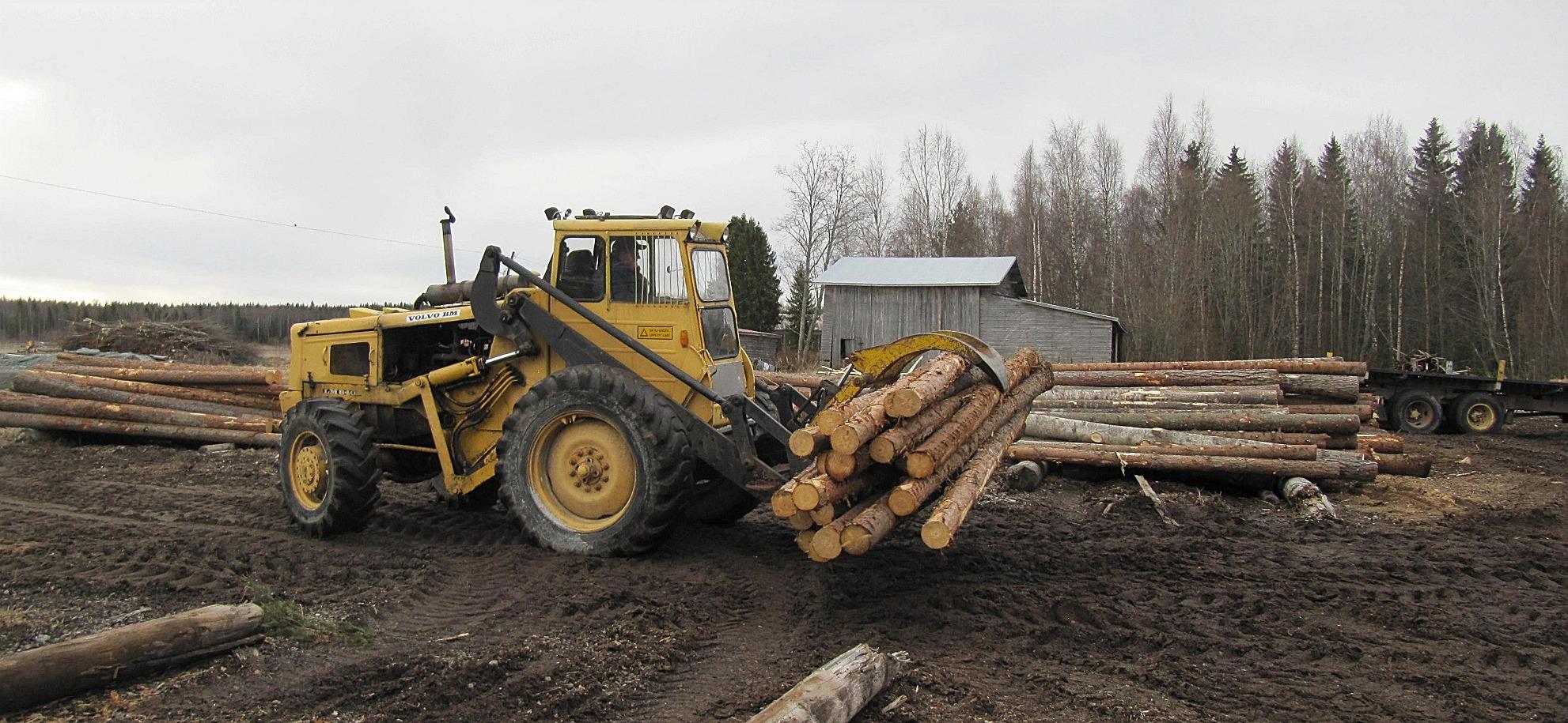 Från sågbacken körs stockarna fram till sågbyggnaden med en truck.