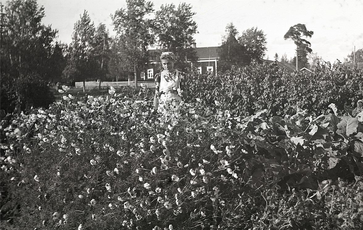 Elise Klockars (senare gift Rosendahl) visar upp blommorna i sitt klubbland.