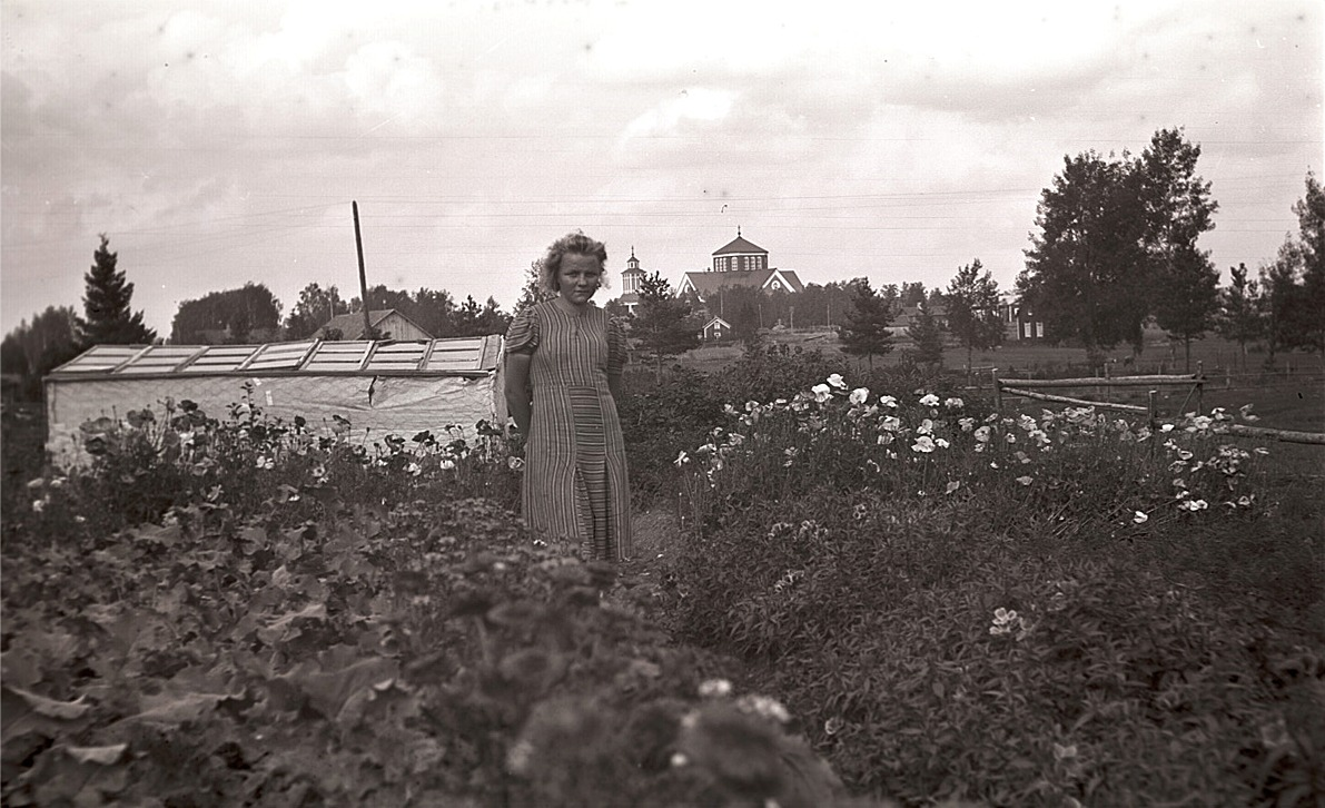 Greta Vesterlund visar upp sitt klubbland och växthus på Åsändan med kyrkan i bakgrunden.