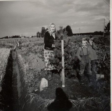 Här står Tilda i trädgården med barnbarnet Sten och dennes kusin Annel. Skymd bakom Tilda finns Mitts Julandas gård.