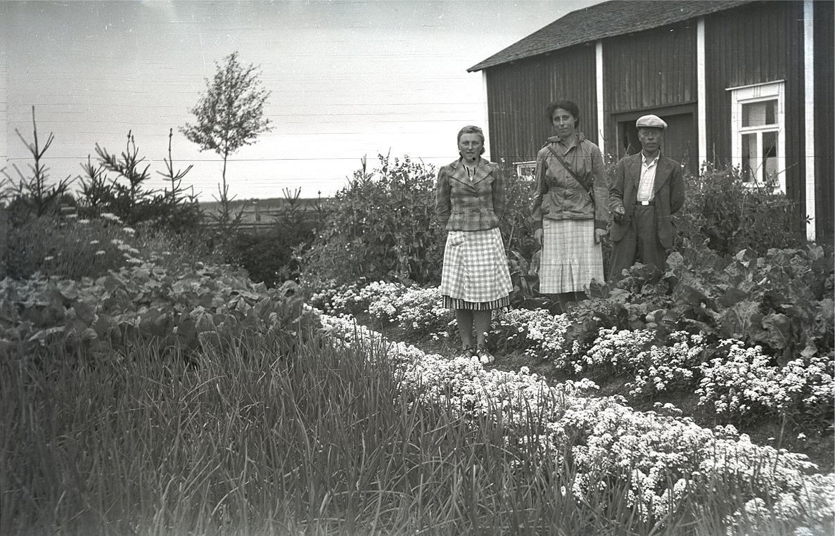 Marita Ålgars med agr. Beaurain och Vidjeskog i sitt trädgårdsland.