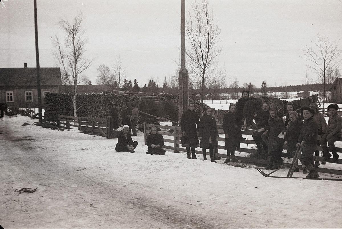 Skoleleverna körde ved till skolan på vårvintern 1944.