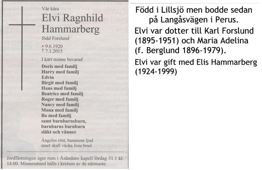 Hammarberg Elvi