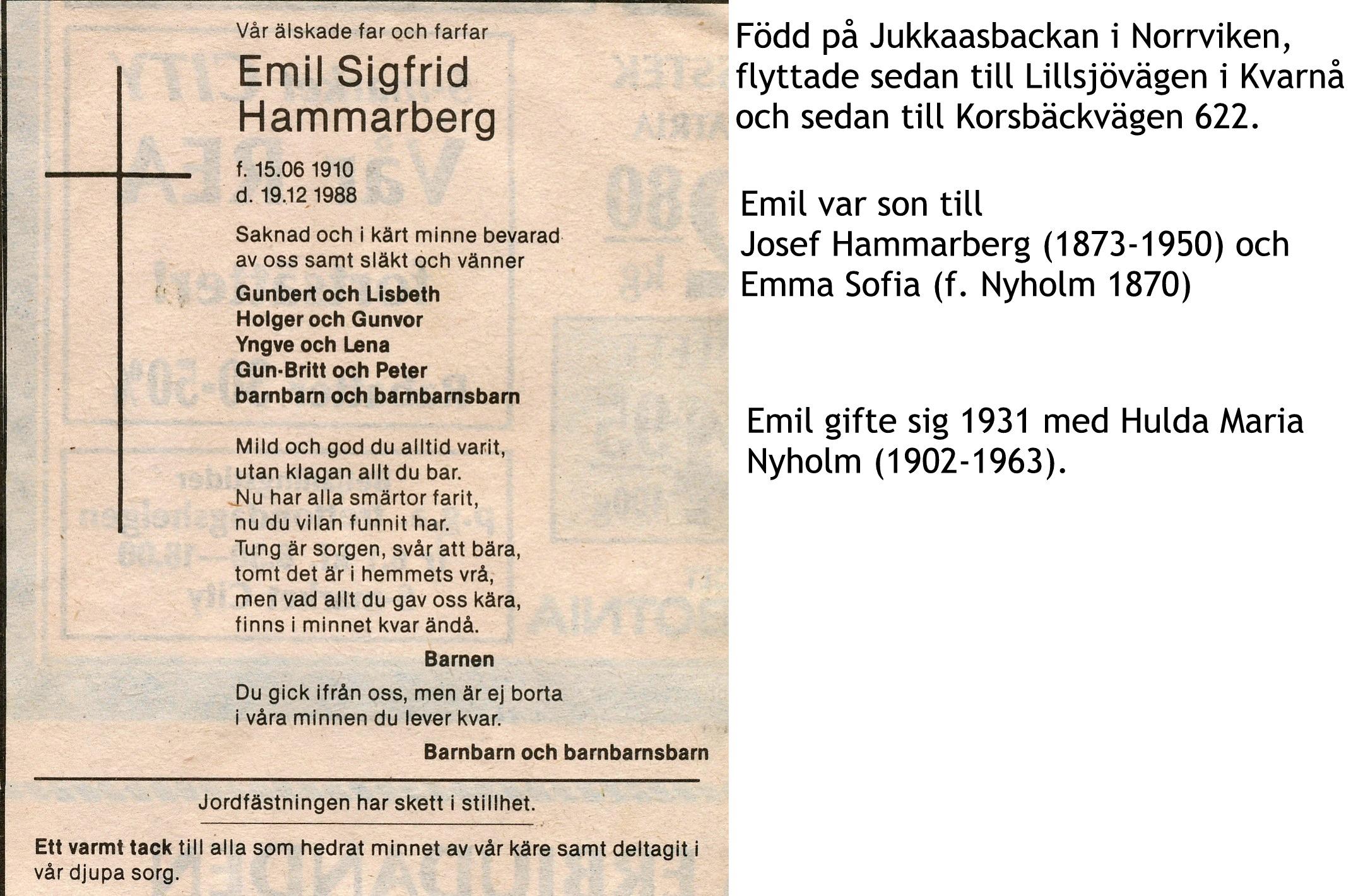 Hammarberg Emil