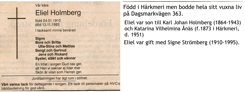 Holmberg Eliel