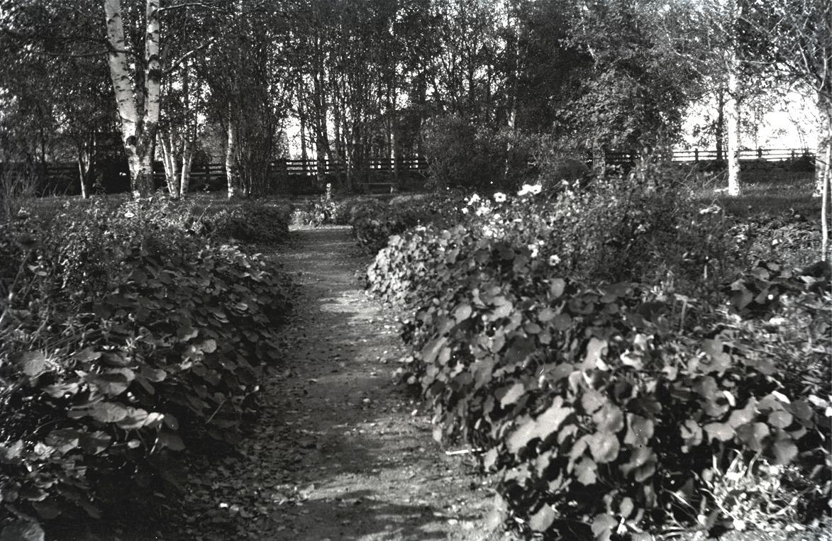 Med lite fantasin kan man se de färggranna blommorna i den prunkande trädgården vid södra folkskolan.