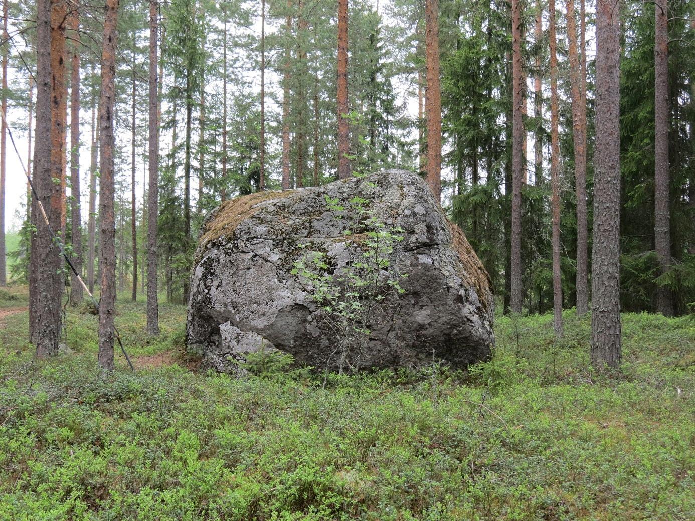 Lisa-Mors sten fotograferad från söder och här har den legat sedan de stora ismassorna fört den med sig under den senaste istiden som slutade för 10 000 år sedan.