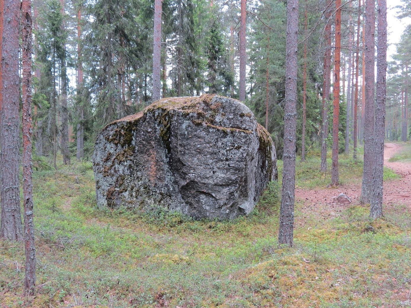 Här stenen fotograferad från norr och det syns tydligt hur stenen kilats sönder och delar av den förts bort. Till höger på bilden syns motionsspåret som går väldigt nära stenen. Det är inte riktigt lätt att klättra upp på den över två meter höga stenen och åtminstone för byns pojkar har det räknats som ett mandomsprov att på egen hand komma upp på den.