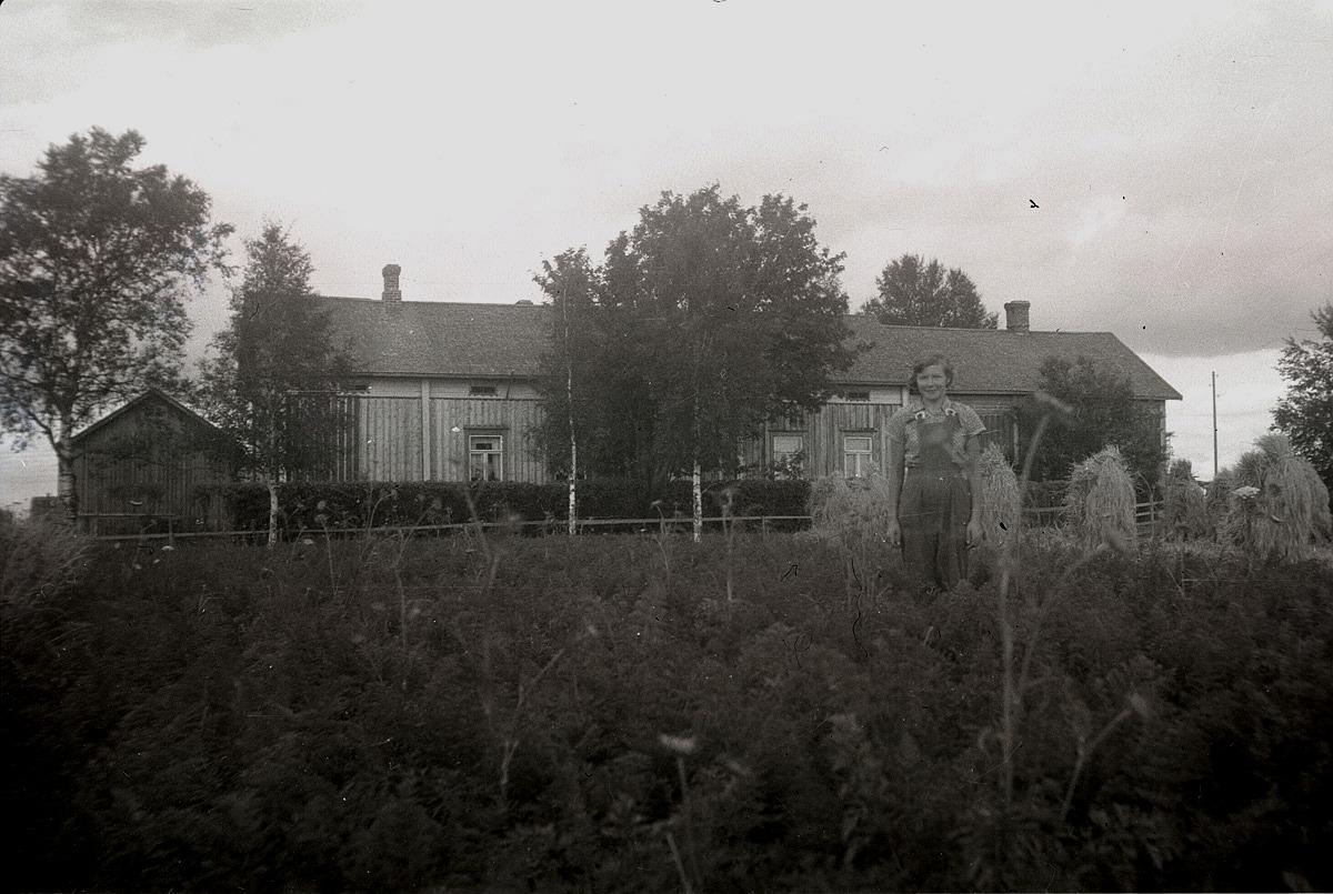 Rigmor Brandt i sitt morotsland framför den stora bondgården.