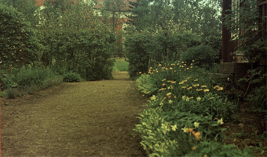 Trädgården var ett kärt fotograferingsobjekt för läraren Selim Björses.