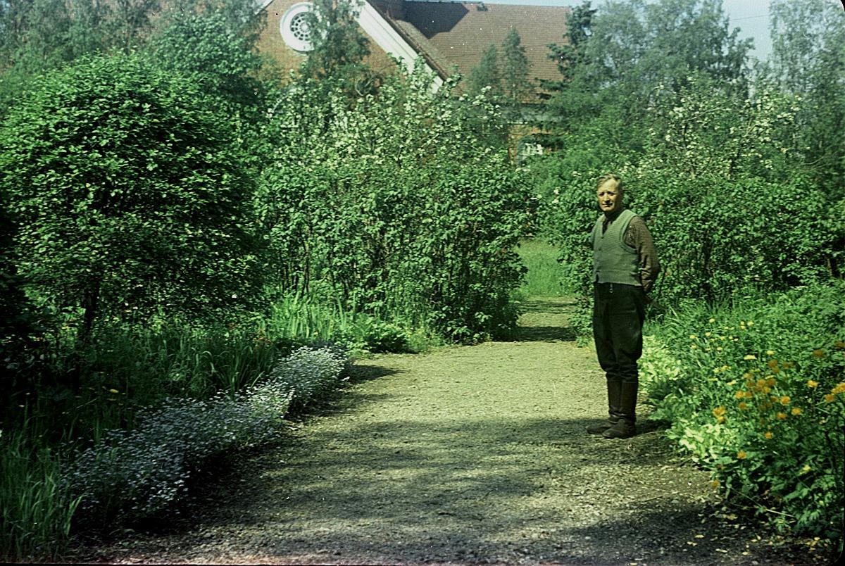Folkskolläraren Selim Björses i sin fina trädgård år 1957.