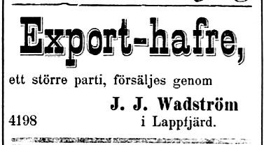 Det var säkert för att dryga ut den lilla lärarlönen, som Wadström 19 oktober 1893 bjöd ut ett större parti havre i Wasa Tidning.