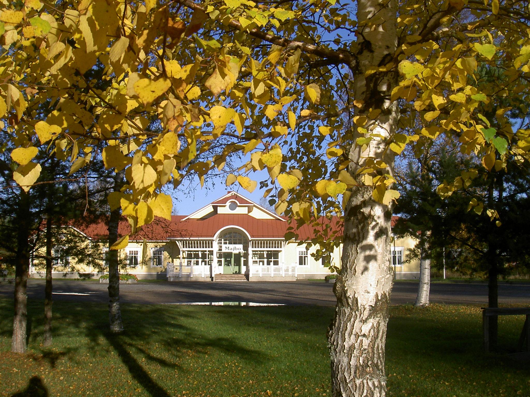 Föreningshuset Majbo lyser gult bland de gula höstlöven.