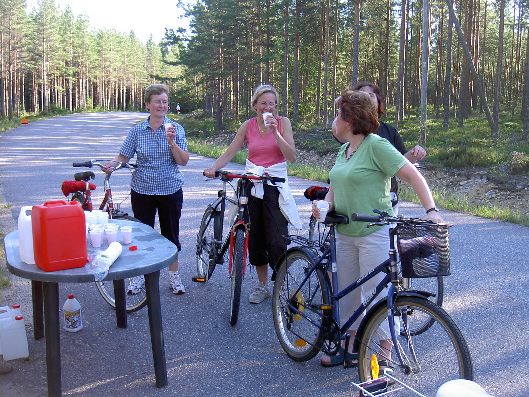 Glada flickor från Klemetsändan tar en paus uppe på Bergåsen.
