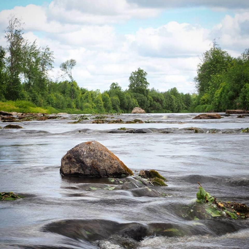 Kim Hammarbergs foto från Verkforsen där rester av den gamla dammen kan sjönjas. Fotot från försommaren 2018.