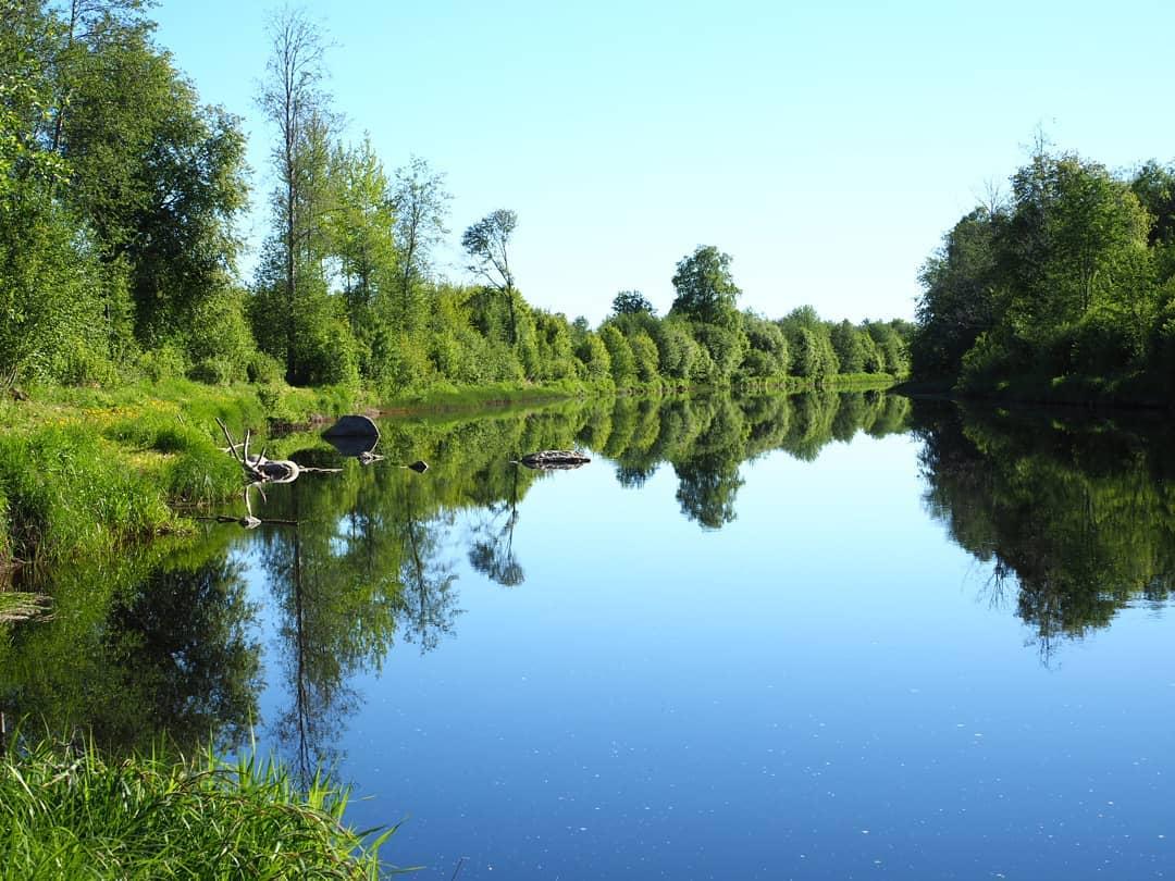 Så här spegelblank kan Lappfjärds å vara under en vacker försommardag år 2018. Fotot är taget av Kim Hammarberg och det är taget uppströms från Storbron i centrala Dagsmark.