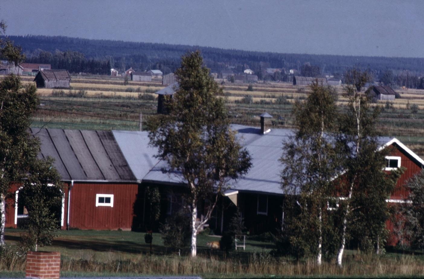 Bakom Storkulls uthus breder åkrarna ut sig på Åbackan. Fotot från lokaltaket 1974.