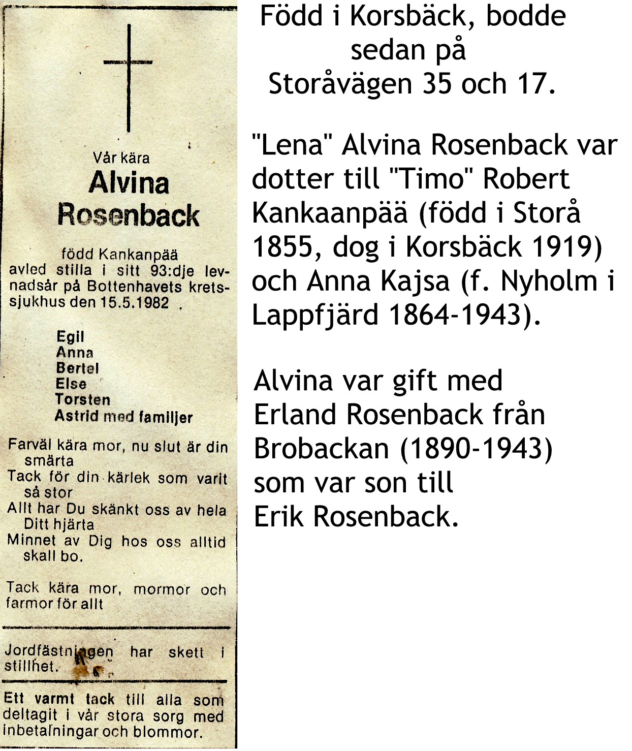 Rosenback Alvina