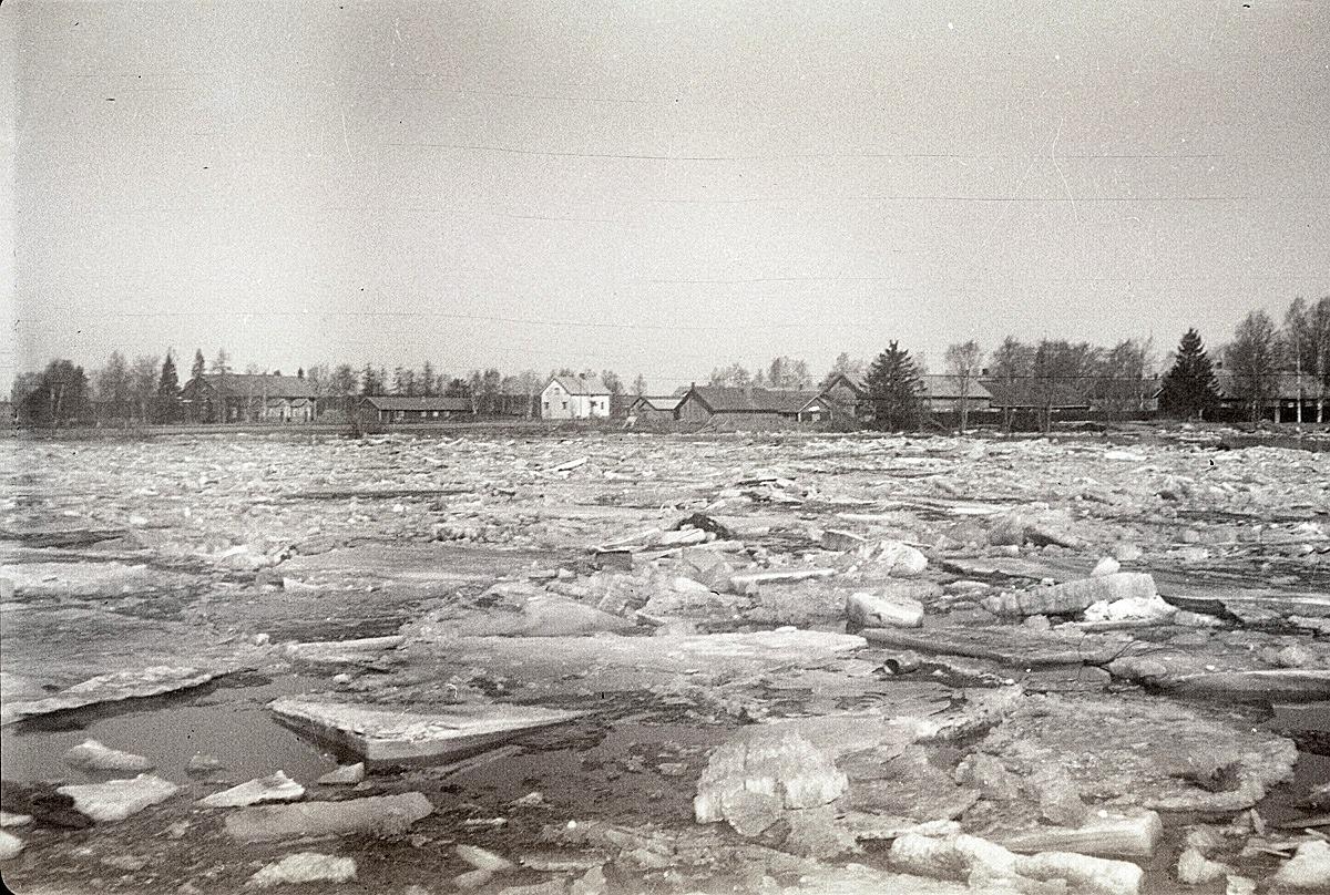 Stensund helt översvämmat vid islossningen 1962. På andra sidan ån till vänster syns norra folkskolan med uthus, den vita gården är Nils Finnströms, sedan Ålgars rian och till höger syns uthusraden vid HAB-banken.