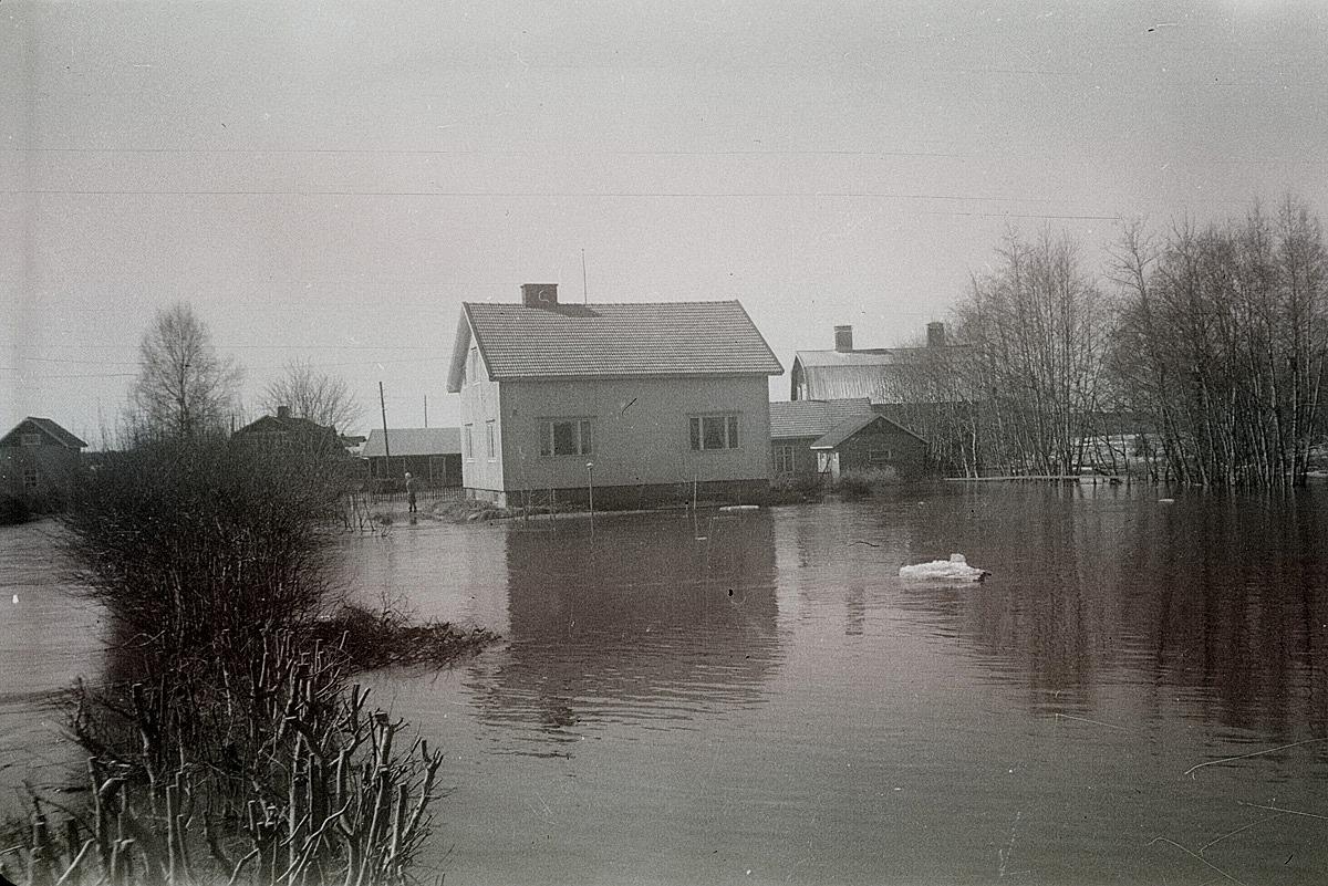 Översvämning i Lappfjärds centrum 1962. Åke Lindahls gård, Sandgrunds såg och många andra byggnader var helt omringade av vattenmassorna.