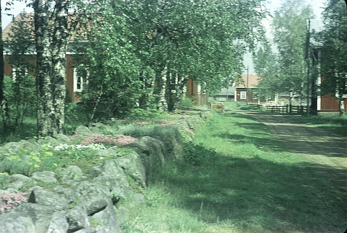 Skoltå vid södra folkskolan fotograferad från landsvägen. Längst fram syns Gustas Kaalas gård.