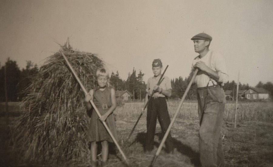 Lennart Grans med barnen Annel och Jarl bärgar höet i Nystad. I bakgrunden syns Adelinas gamla gård.