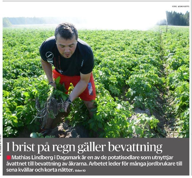 Sommaren 2018 var den varmaste och torraste på långa tider och Mathias Lindberg bevattnade odlingarna och tidningen Syd-Österbotten gjorde ett längre referat om detta 26 juli 2018.