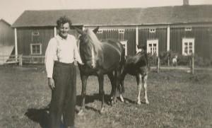 Gunnar Långkvist visar upp sin häst och sitt föl framför sin långa bondgård.